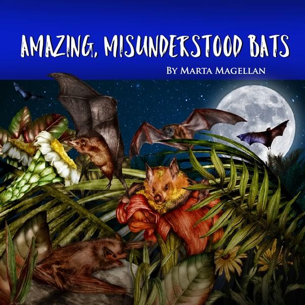 Amazing Misunderstood Bats