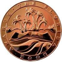 Florida Book Award Bronze Medal Winner